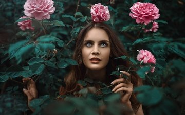 flowers, girl, portrait, roses, look, model, hair, face, bush, turkey, kaan altindal