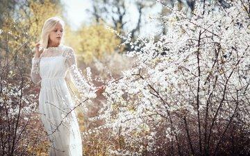 природа, девушка, блондинка, ветки, весна, белое платье, невеста, tatjana