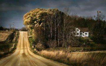 небо, дорога, деревья, дом, сша, лэп, ферма, jody miller, айова