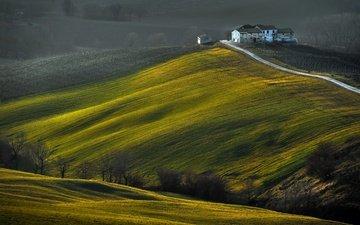 дорога, деревья, холмы, поле, дом, riccardo pesaresi