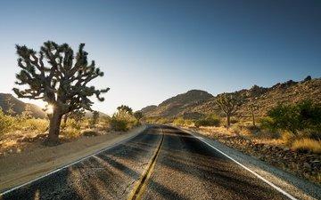 небо, дорога, утро, пустыня, поворот