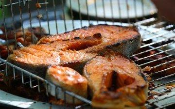 еда, рыба, морепродукты, барбекю