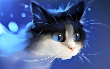 фон, кот, мордочка, усы, кошка, взгляд, котенок
