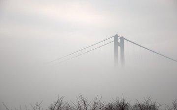 trees, river, fog, bridge, the city, black and white, england, humber, kingston upon hull