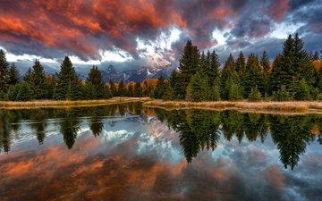 горы, лес, отражение, утро, сша, вайоминг, река снейк, гранд -титон национальный парк, национальный парк гранд-титон