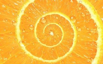 drops, fruit, spiral, orange, citrus