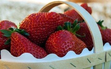 strawberry, berries, basket