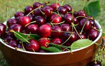 листья, черешня, ягоды, вишня, чашка, миска
