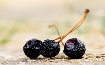 macro, berries, cherry, dry