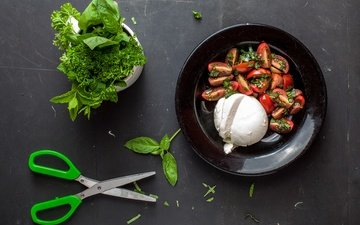 зелень, мята, еда, сыр, овощи, помидоры, ножницы, салат, петрушка, моцарелла, руккола