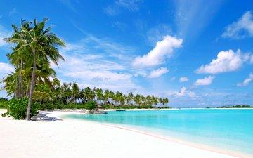 sea, beach, tropics, the maldives
