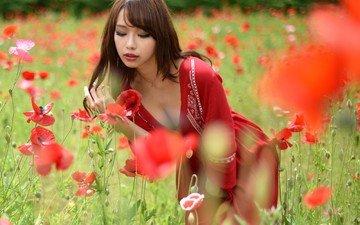 цветы, девушка, поле, маки, модель, волосы, лицо, макияж, азиатка, красное платье, на, декольте