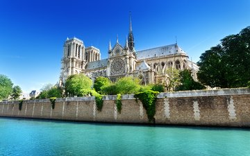 the sky, trees, water, paris, france, notre dame cathedral