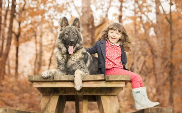 улыбка, взгляд, осень, собака, девочка, щенок, волосы, лицо, язык, друзья, немецкая овчарка, овчарка