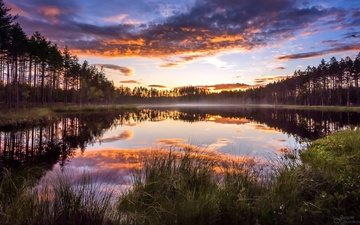 the sky, clouds, lake, forest, sunset, fog