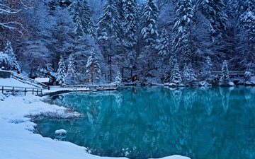 lake, forest, winter, switzerland, bernese oberland, kander valley, the valley of the river kander, the kander valley