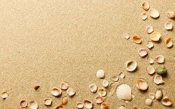 песок, пляж, ракушки