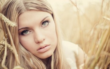 девушка, портрет, взгляд, колосья, пшеница, волосы, лицо, alina stolzenburg