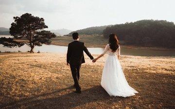 природа, дерево, костюм, жених, свадьба, белое платье, невеста