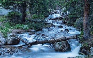 деревья, река, лес, колорадо, каскад