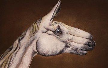 рисунок, лошадь, рука, креативный