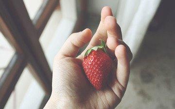 рука, ягода, клубника, окно, пальцы