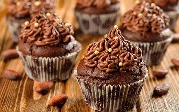 chocolate, sweet, dessert, cupcakes, cream, cocoa beans