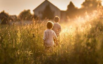 трава, солнце, растения, лето, дети, дома, мальчики, iwona podlasinska