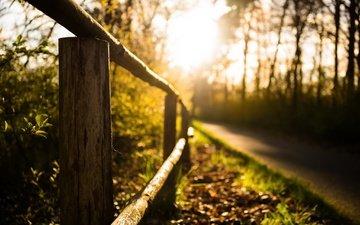 свет, дорога, трава, природа, растения, фон, лето, забор, размытость, ограждение