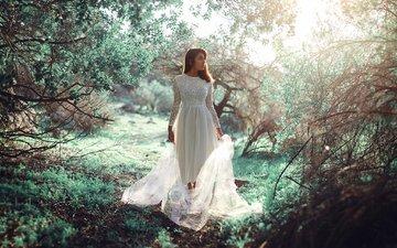 свет, природа, девушка, платье, взгляд, весна, волосы, лицо, ronny garcia