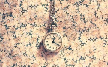 texture, macro, background, watch, time, flowers, chain, dial