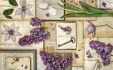 цветы, винтаж, книги, ключ, тюльпан, сирень, клематис, гербарий