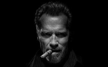 взгляд, чёрно-белое, актёр, сигара, борода, арнольд шварценеггер