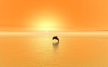 закат, море, прыжок, дельфин