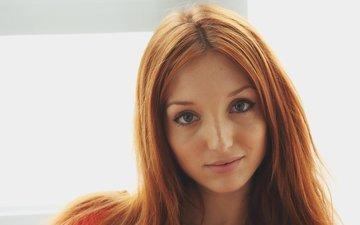 девушка, портрет, взгляд, рыжая, модель, волосы, лицо, длинные волосы, michelle h