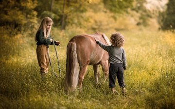 horse, nature, mood, summer, children, girl, meadow, boy, childhood, friendship, foal, kids