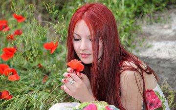 цветы, девушка, взгляд, маки, волосы, лицо, руки, красные волосы
