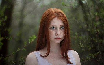 глаза, лес, девушка, портрет, взгляд, рыжая, модель, лицо, веснушки, длинные волосы, lora kalinina