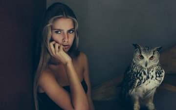 owl, girl, background, look, bird, hair, face, bare shoulders, camille rochette, david olkarny
