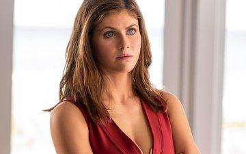 portrait, look, face, actress, brown hair, neckline, alexandra daddario