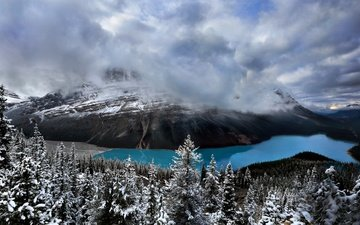 the sky, clouds, lake, mountains, nature, forest, canada, banff national park, peyto lake