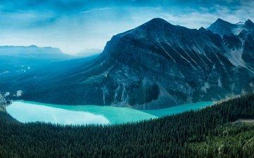 лес, гора, канада, национальный парк, банф, провинция альберта, озеро луиз