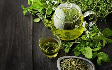 photo, drink, tea, cup, teapot, melissa, green tea