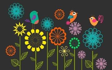 flowers, vector, birds, spring, black background