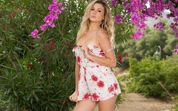 flowers, girl, dress, look, chest, bust, playboy, rus, julie ambrose