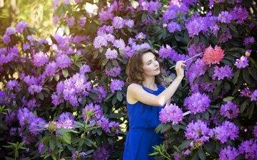 цветы, природа, девушка, взгляд, сад, волосы, лицо, синее платье