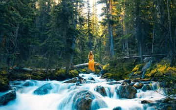 trees, river, stones, forest, girl, dress, stream, lizzy gadd