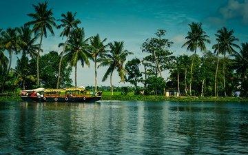 деревья, река, солнце, зелень, домики, лодка, пальмы, индия, kerala, alappuzha