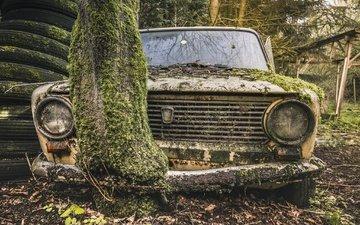 дерево, авто, мох, лом, жигули