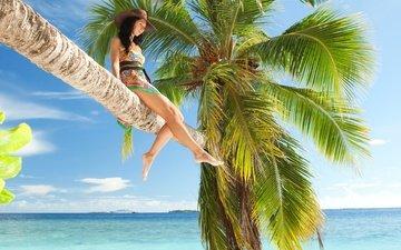 небо, облака, девушка, море, поза, пальма, ножки, шляпа
